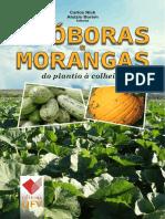 Abóboras do plantio à colheita.pdf