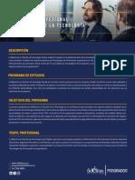 Plan Estudios Fidelitas maestría