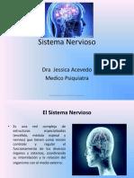 Sistema Nervioso Dra Jessica Acevedo(1)