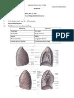 lab manual week 4.docx