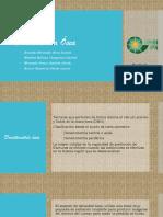 Densitometría Osea PPT