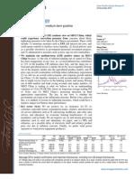 JPM China Strategy 112410