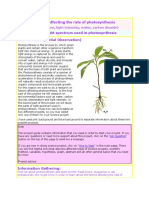 Factors affecting the rate of photosynthesis.docx