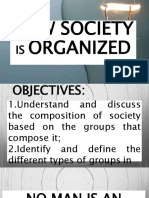 how is society organized