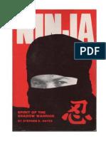 Stephen Hayes.ninja Spirit of the Shadow