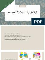 Anatomy pulmo presentation 1