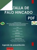 BATALLA DE PALO HINCADO presentacion  lista