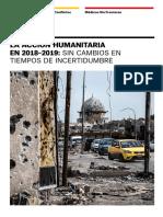 Informe_IECAH_MSF-2018-2019