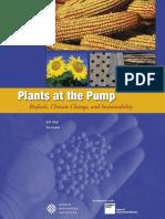 plants_at_the_pump