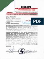 Carta Cenajupe a Marianela Ledesma, flamante Presidente del Tribunal Constitucional
