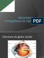 Mecanismo fotoquímico na visão
