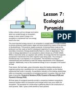 Lesson 6 Ecological Pyramids