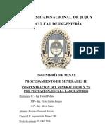 TP Nº6 Concentración del mineral de Pb y Zn por Flotacion, escala laboratorio.docx