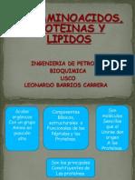 Aminoacidos Proteinas y Lipidos (2)