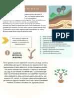 C3_M6_S1_Muestreo del suelo_PDF.pdf