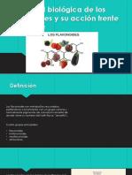 Actividad biológica de los flavonoides y su acción cancer