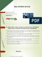 Experto expo.pdf