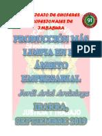 Produccion mas limpia.docx