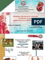 BIOQUÍMICA CONVERSIÓN MÚSCULO DEFINITIVAAA.pptx