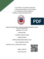 PROYECTO BOLSITAS (3).pdf