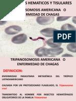 ENFERMEDAD DE CHAGAS.pptx