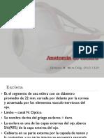 Esclera oftalmo.pptx