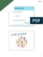 Principios de la Intervención.pdf
