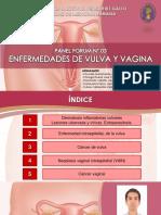 PANEL FORUM N° 03 - ENFERMEDADES DE VULVA Y VAGINA