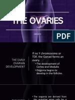 THE OVARIES