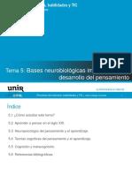 Bases Neurobiológicas del desarrollondel Pensamiento