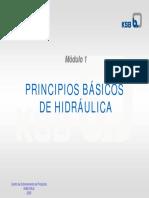 mód.1 - PRINCIPIOS BASICOS