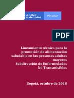 Lineamiento Técnico para la promoción de alimentación Saludable en Personas Adultas Mayores.