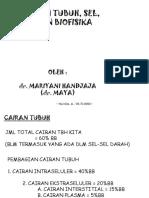 KULIAH SEL & BIOFISIKA (6MARET'07-MAYA)