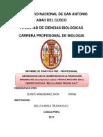 PRACTICAS PRE PROFECIONAL FINAL.docx