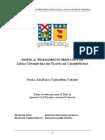 PCastañeda.doc