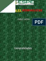 Centrales hidraulicas octubre 2018.ppt