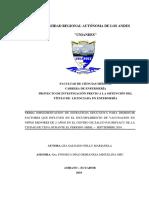 PIUAENF017-2016.pdf