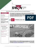 Número 61. TRABAJOS DE JARDINERÍA.pdf