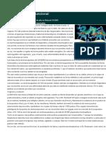 Informacion_electroacupuntura.doc