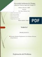 ABP - Sabana Africana