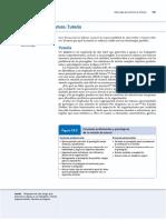 Liderazgo para la tutoría.pdf