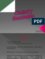 5. Control y Demuestre.pdf