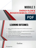 Energy Flow and Biogeochemical Cycles