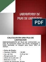 TRABAJO DE PILAS DE LIXIVIACION.pptx
