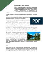 Diferencias Entre Ecosistema y Medio Ambiente