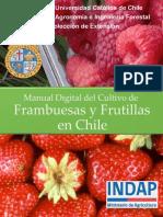 manual-de-cultivo-de-frambuesa-en-chile_indap-puc-2015