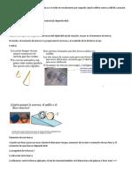 Inercia y Rotaciones - Copia