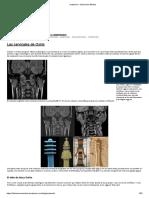 anatomía – Ilustración Médica oftalmologia