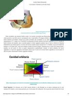 Cavidad Orbitaria [Anatomia] _ _