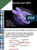 recombinacion transposonesyretrovirus